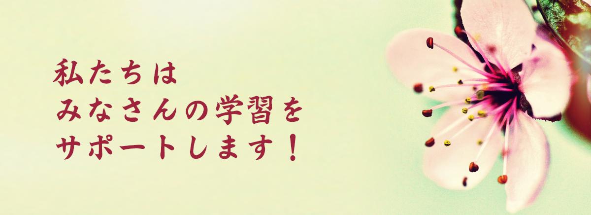 Kursy języka japońskiego - lektorzy w AKARI